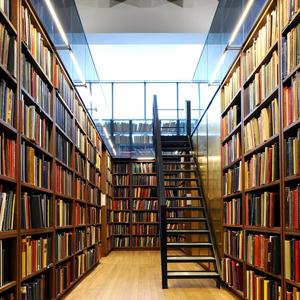 Библиотеки Дрезны