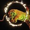 Цирки в Дрезне
